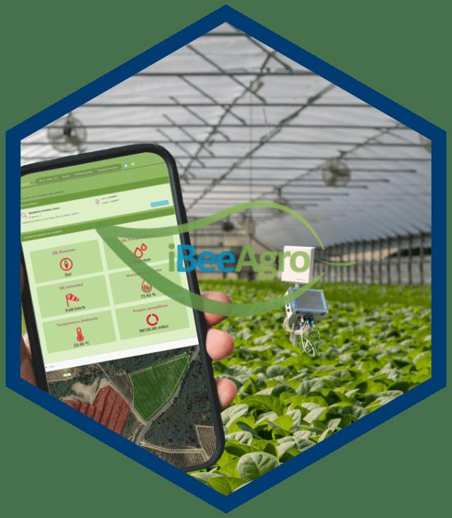 ibeeagro_software_de_gestión_agricultura